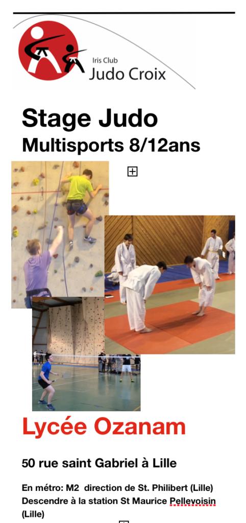 Stage de judo/multisports pour les 8/12 ans